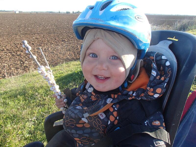 ребенок в велокресле