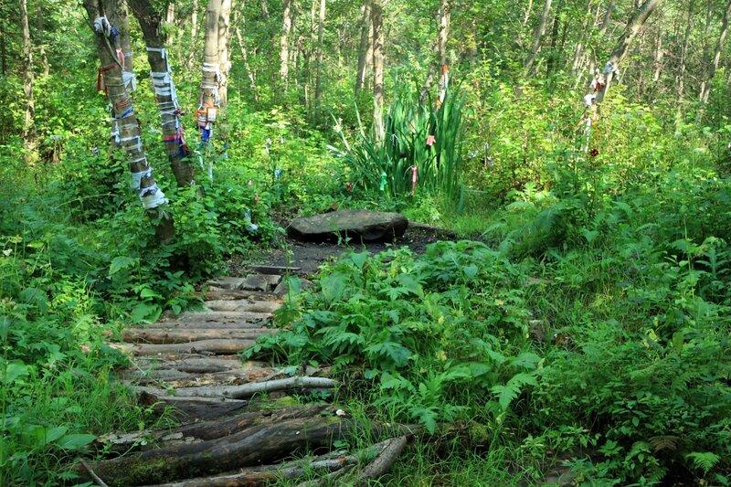 Киндяковский камень в Шутовом лесу