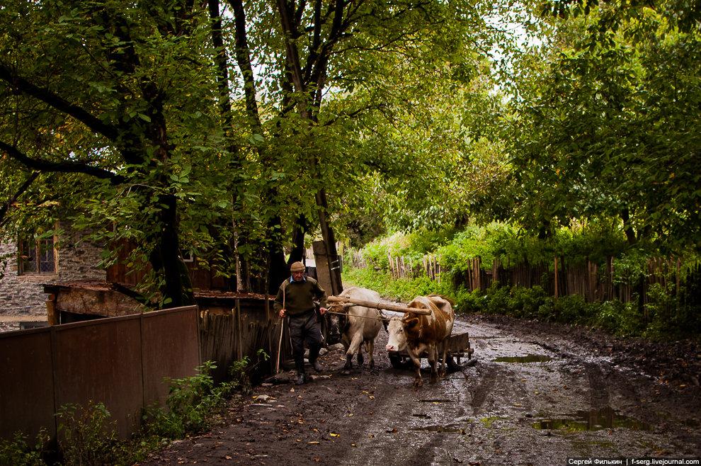 Осенняя Грузия (сентябрь 2013 - часть 5/5 - Ушгули)