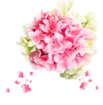 Butterfly Bouquet (93).png
