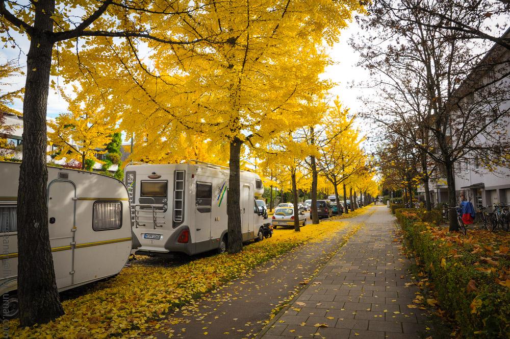 Herbst-Munchen-2013-(65).jpg