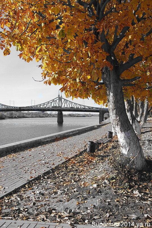 Осень в Твери