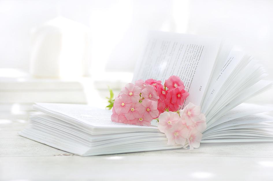 Розовые на белом III