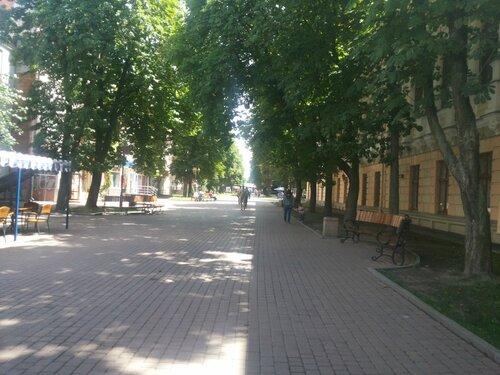 http://img-fotki.yandex.ru/get/9555/58279622.8/0_d5caa_76d5ceae_L.jpg
