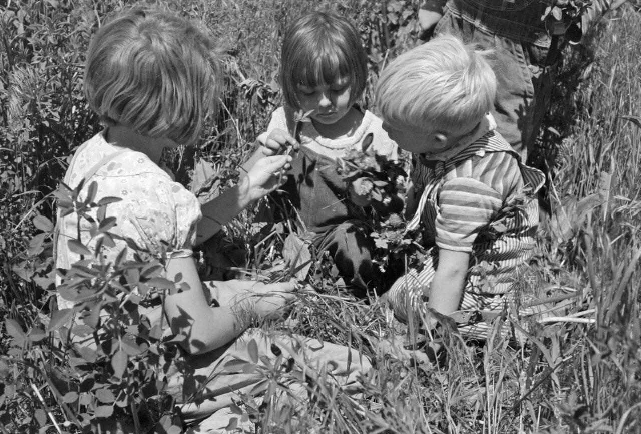 Дети сельскохозяйственных рабочих, живущих в трудовом лагере FSA. Колдуэлл, Штат Айдахо, 1941