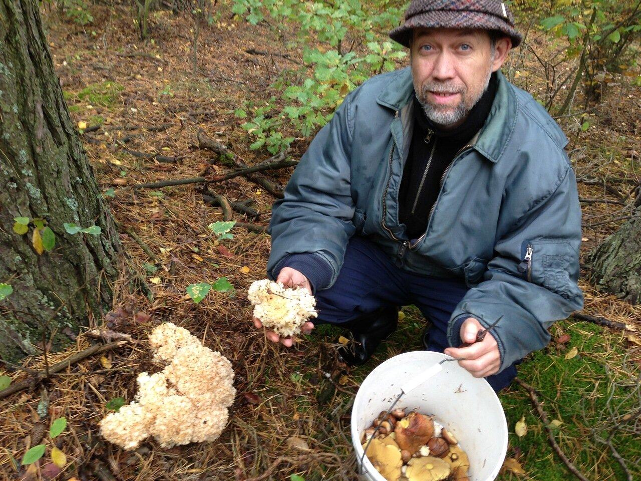 грибы от паразитов