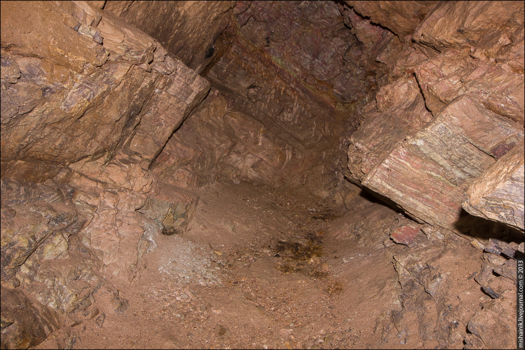 Погребенные кости в разведочном шурфе