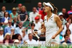 http://img-fotki.yandex.ru/get/9557/14186792.43/0_da25a_98c6a91b_orig.jpg