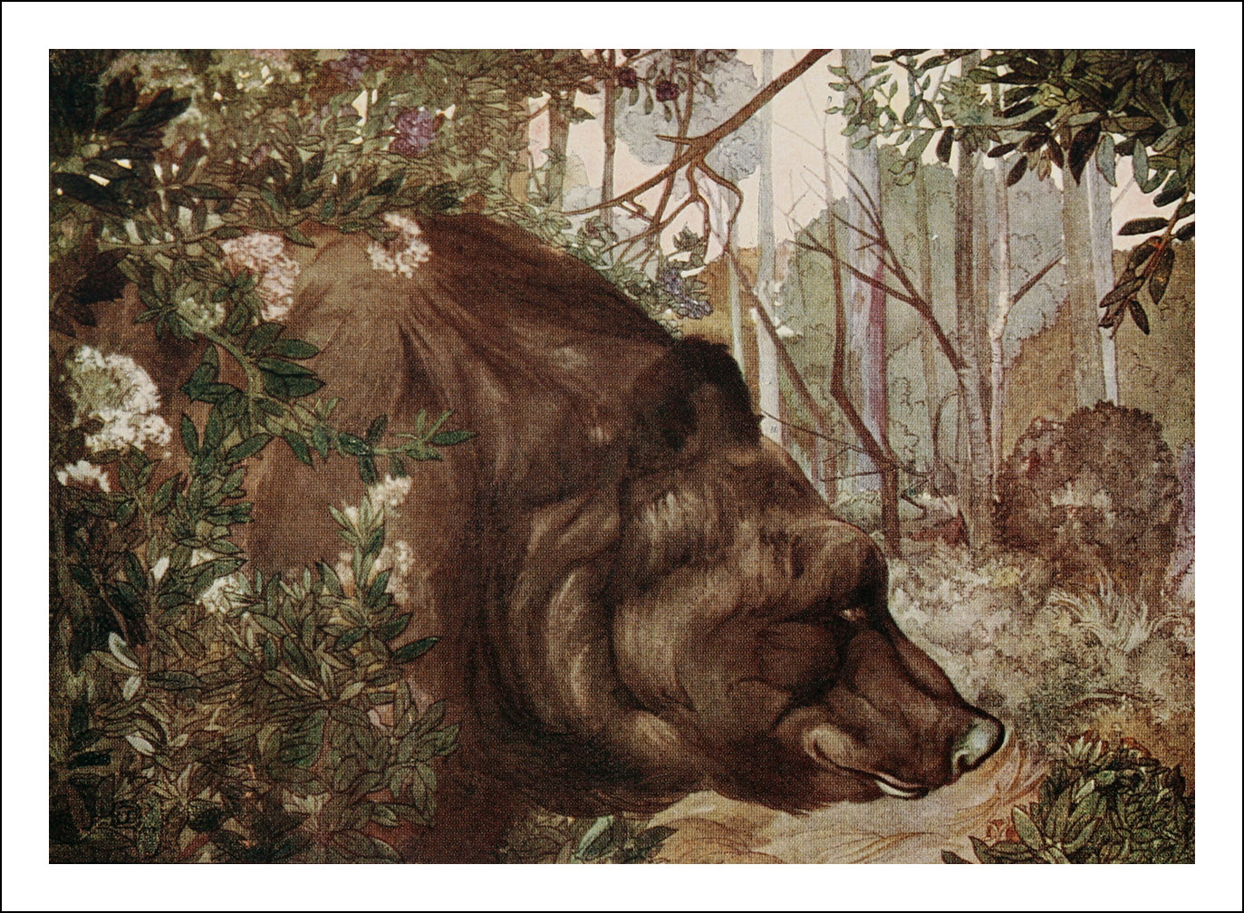 Edward Julius & Maurice Detmold, The jungle book
