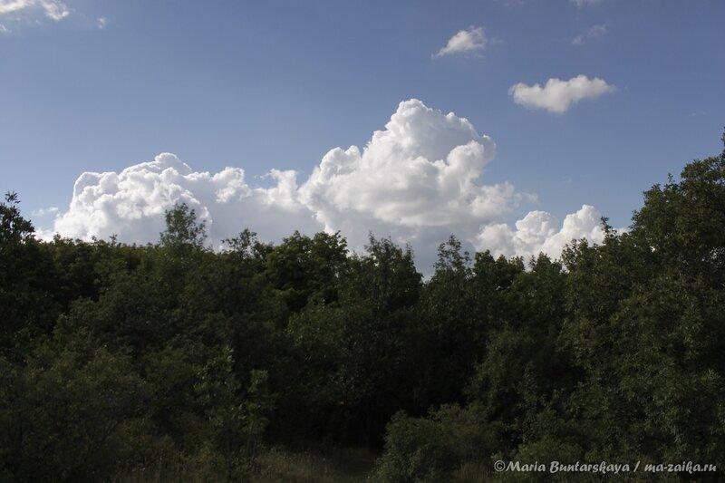Саратов, парк Победы, 28 июля 2013 года