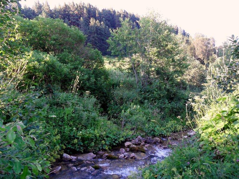 У бегущей воды, в окрестностях Мезмая