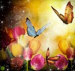 Tulips (5).jpg