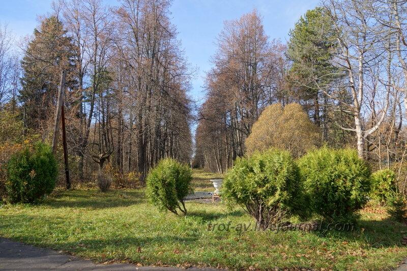 Вид от усадебного дома в сторону центрального входа, Усадьба Любвино, Тучково