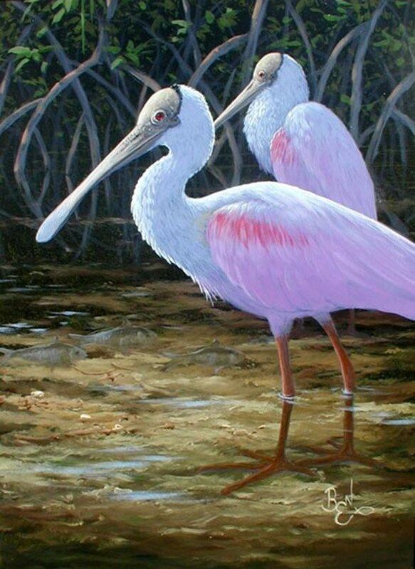 Стаи розовых птиц на озере заката. Художник Ben W. Essenburg