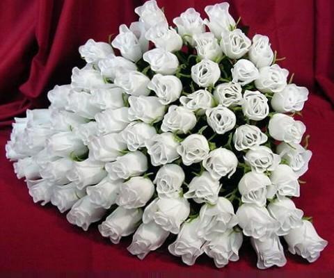 Белые розы. Огромный букет