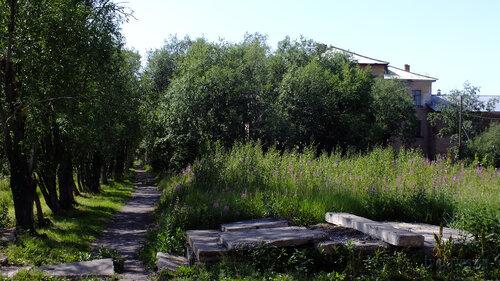 Фото города Инта №5209  Восточная сторона Коммунистической 22 (школа №3) ближе к дороге 16.07.2013_12:50