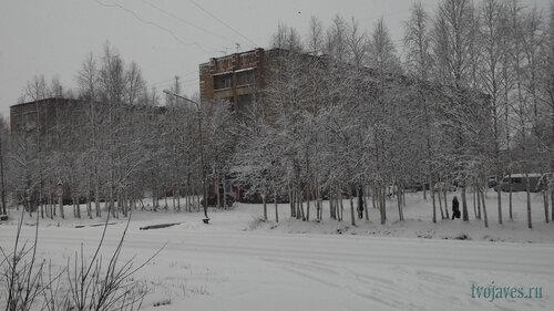 Фото города Инта №6249  Куратова 16 и 14 14.11.2013_11:45