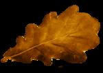 autumn colors factory - bessychou - elem (5).png
