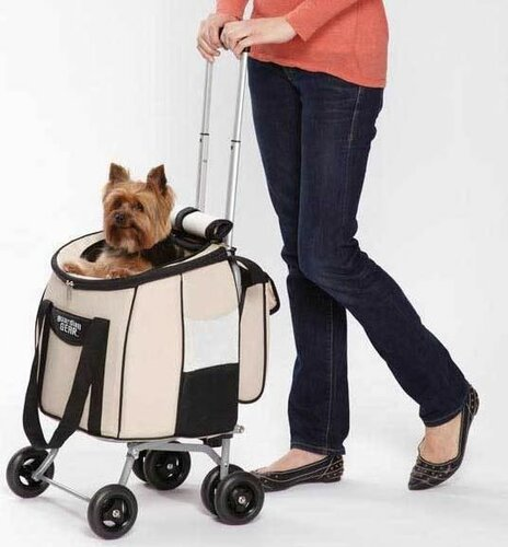 Сумки и слинги для собак