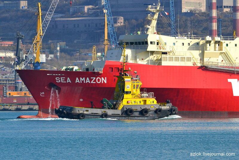"""РБ """"Бодрый"""" и Ro-Ro Cargo """"Sea Amazon"""""""