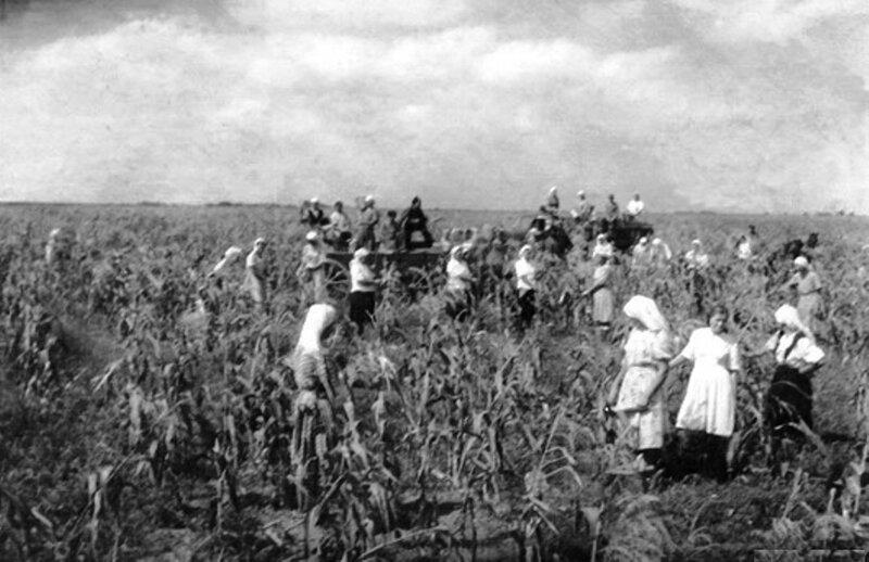 Сельские жители раннего СССР. 011.jpg