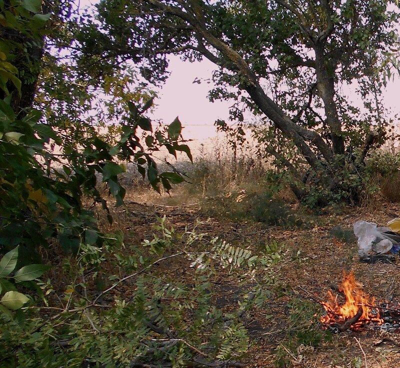 У огня ... DSCN1401 - 1.JPG