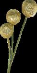 Golden Butterflys (57).png