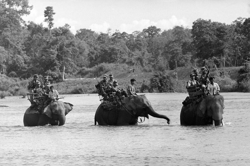 Vietnam War Elephants