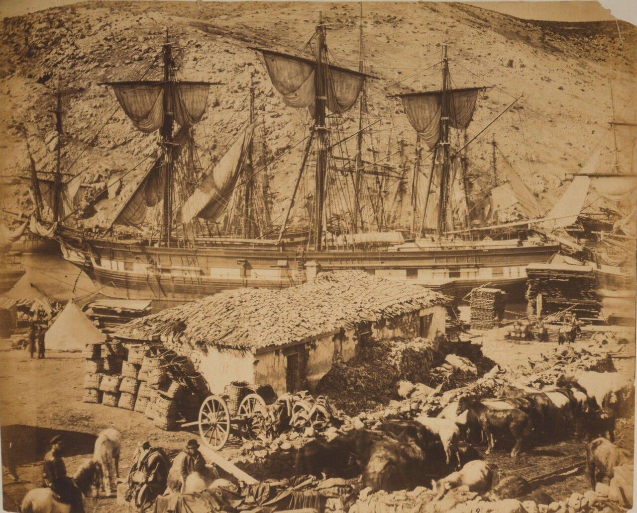 1855. Гавань, пристань для выгрузки скота
