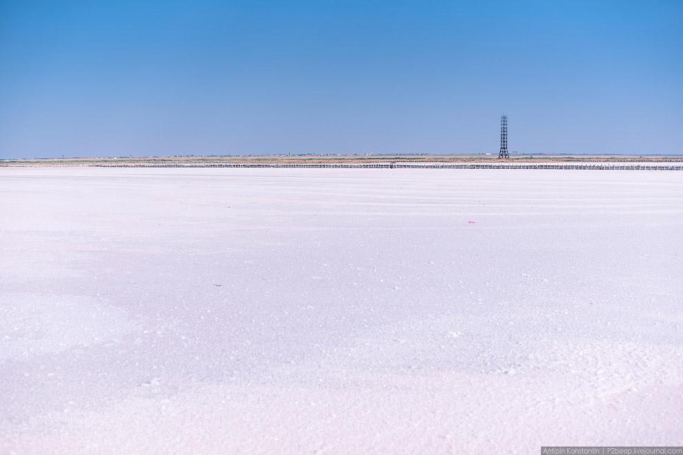 27. Достаточный для промышленной добычи солевой слой — 40 миллиметров. Здесь выращивают вплоть