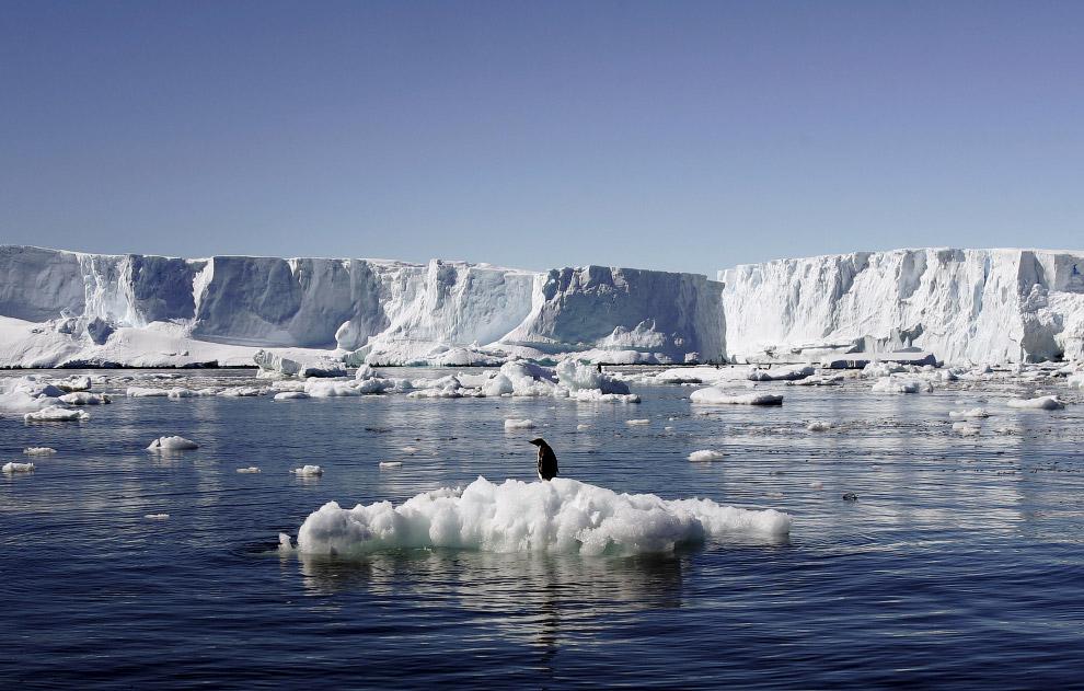 4. Теперь рыболовный промысел в этой зоне будет запрещен на 35 лет. (Ajnj Martin Passingham | R
