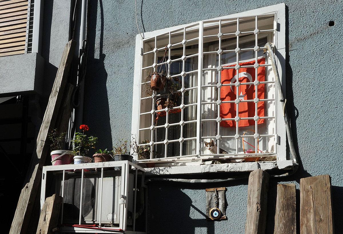 30. В одной фотографии отображен весь Стамбул: цветы, кошка, оберег от сглаза и турецкий флаг.
