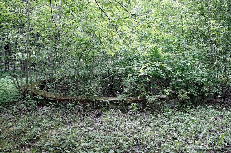 053. Измайловский парк. Руины. фонтан. 03.06.17.01..jpg