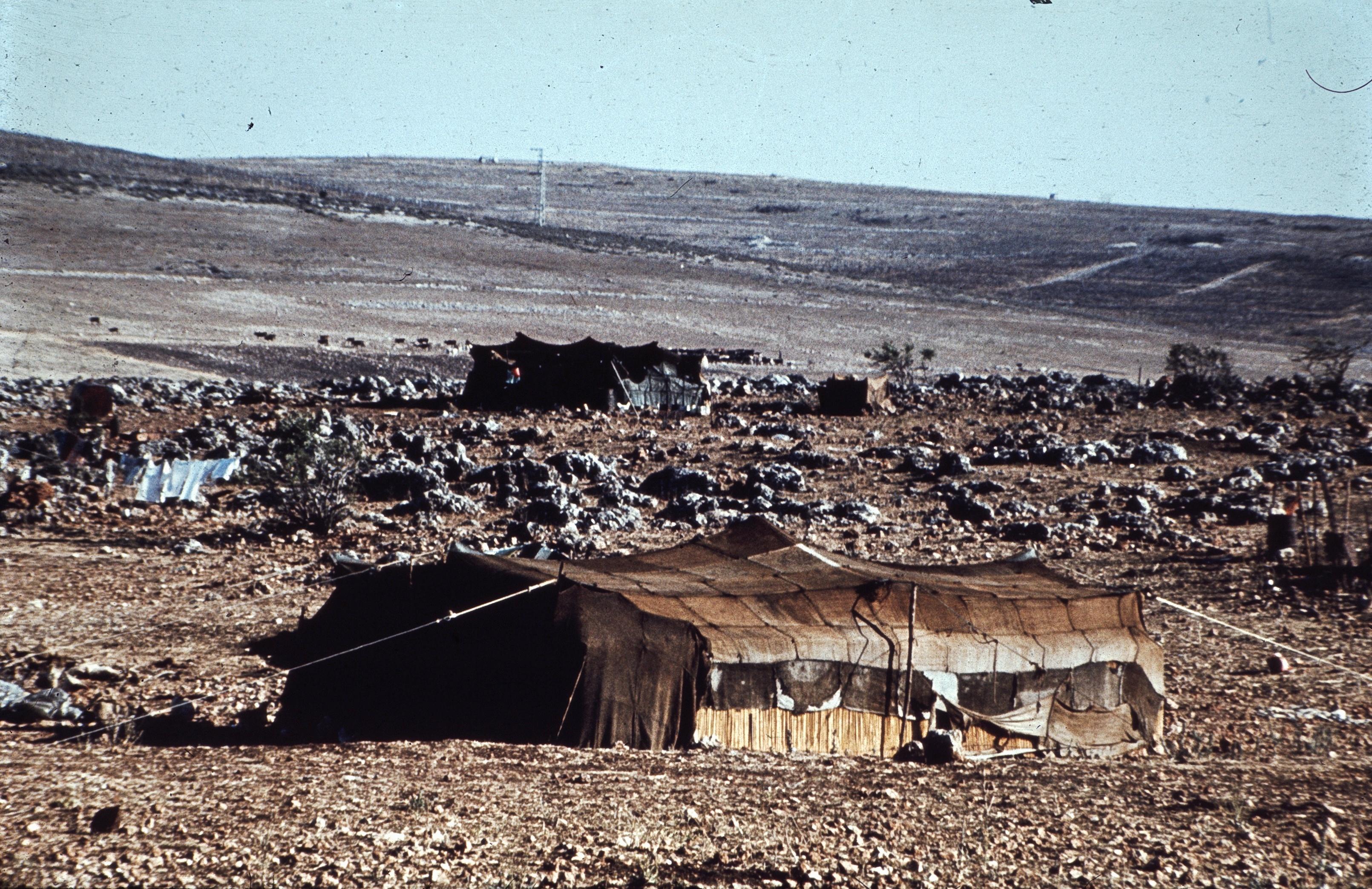 Негев. Бедуинский шатер