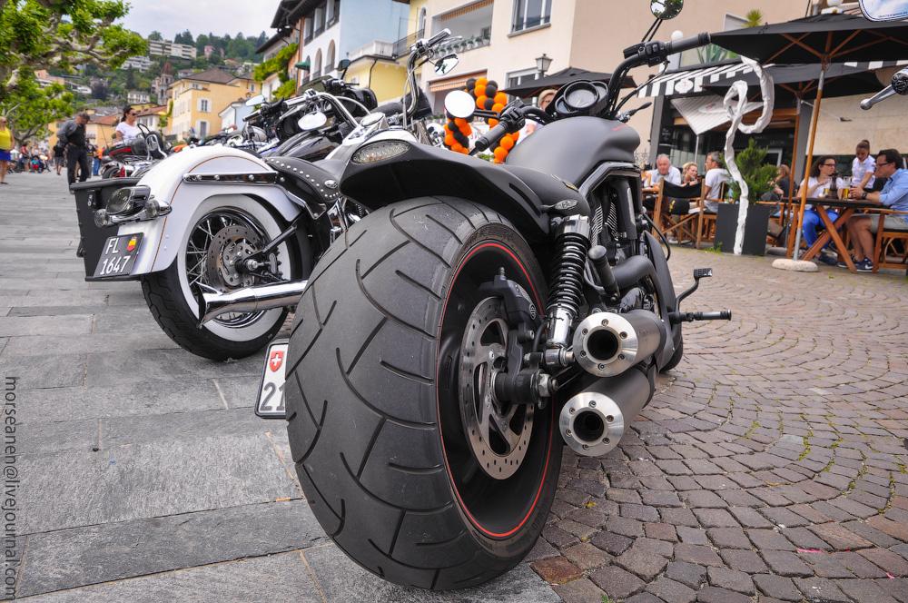 biker-(6).jpg