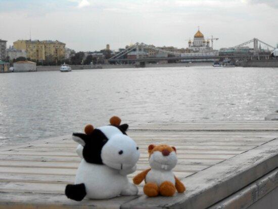 http://img-fotki.yandex.ru/get/9584/136123820.8/0_ba632_a7cc7315_XL.jpg