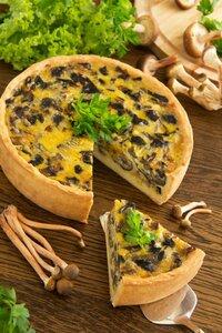 Mushroom pie with cheese and wild mushrooms.