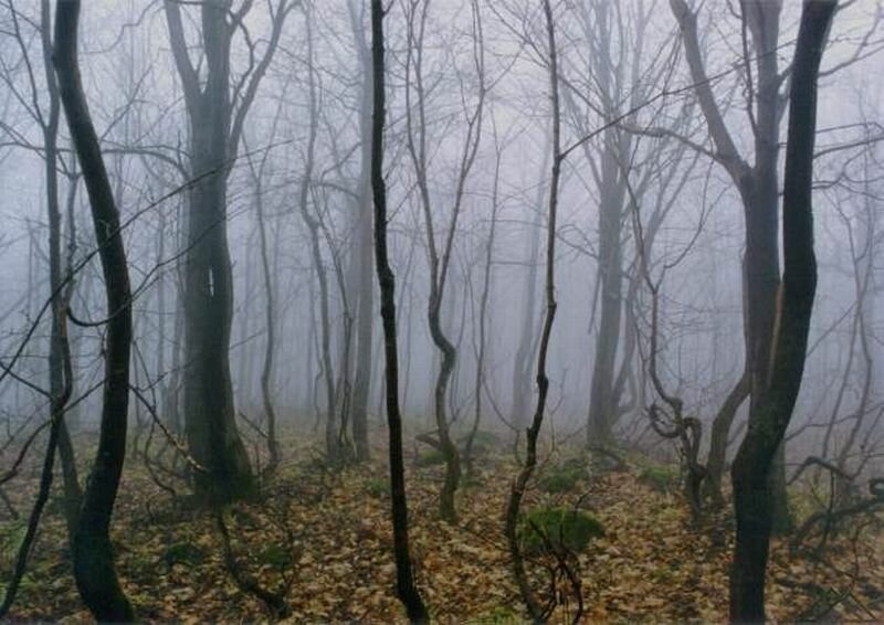 Осень на Аджигардаке (03.10.2013)