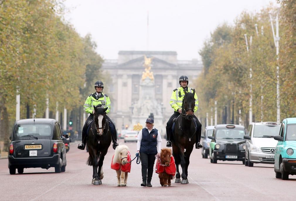 Интересные снимки, сделанные в этом месяце в Великобритании