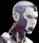 Renee_tube_robot_femelle.png