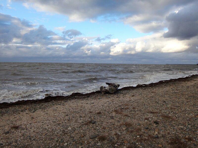 У моря ... На финише октября, в городе у моря Азовского. (65).JPG