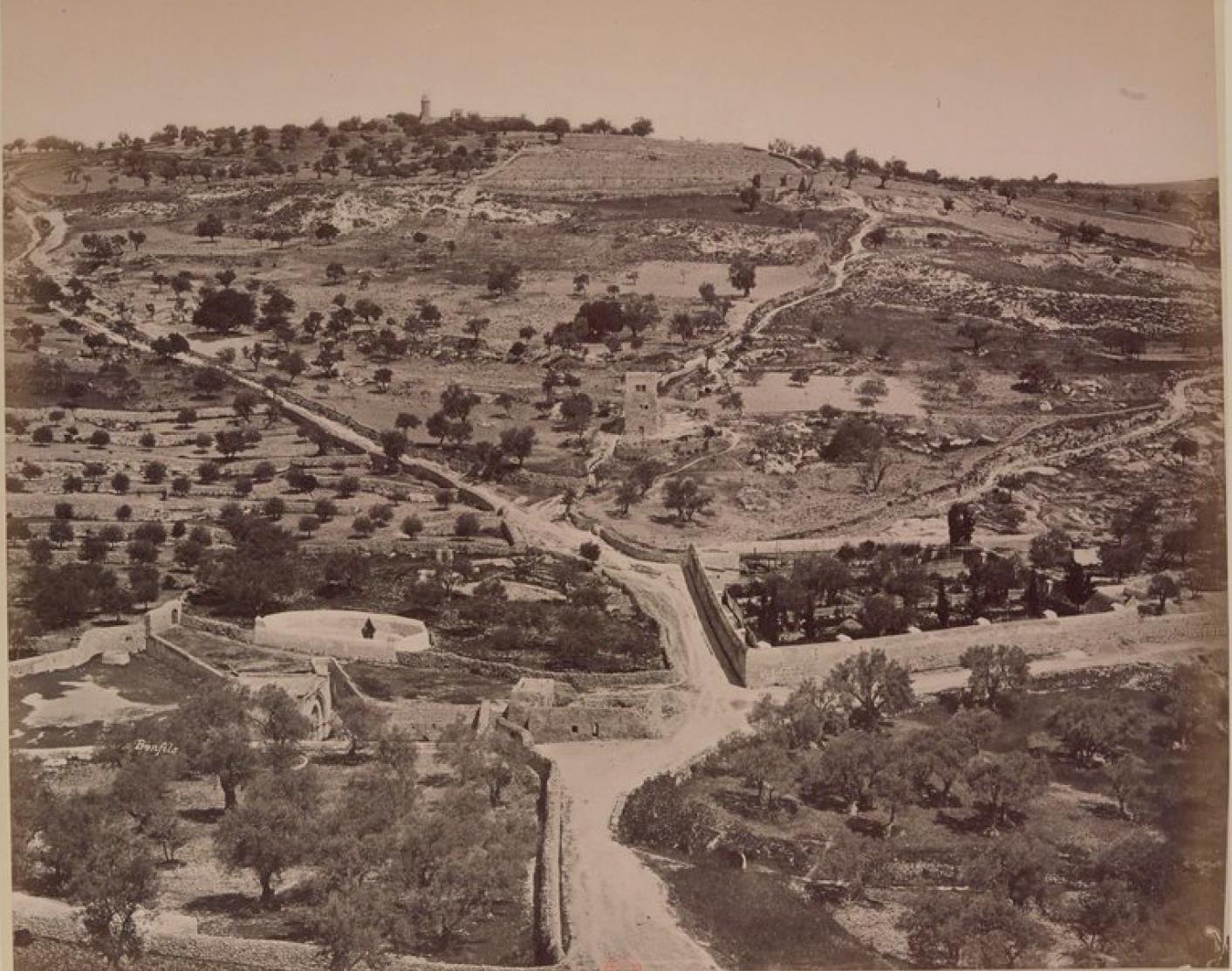 24. Иерусалим. Елеонская гора