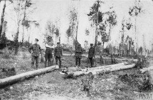 Королевские стрелки  и мертвые большевики на позиции в районе Кедровой