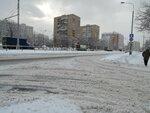 Гольяново снежное