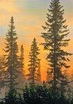 IMG_7224.JPG Восходит солнце за лесом
