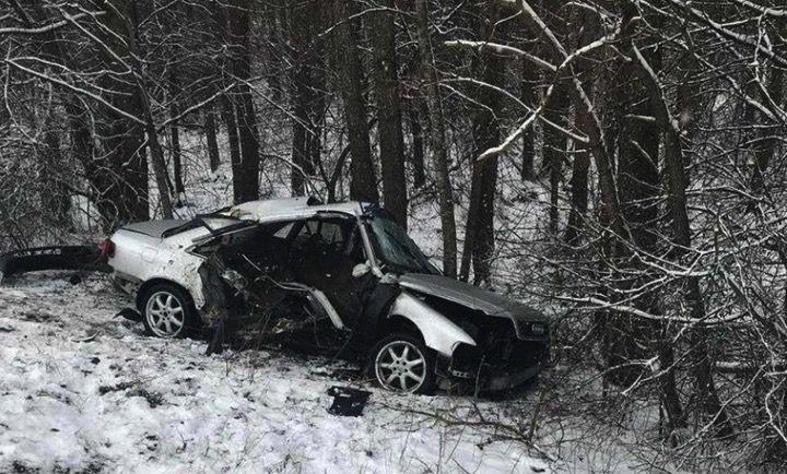 Audi вырвала у Беларуса ковш и улетела с ним в лес (5 фото)