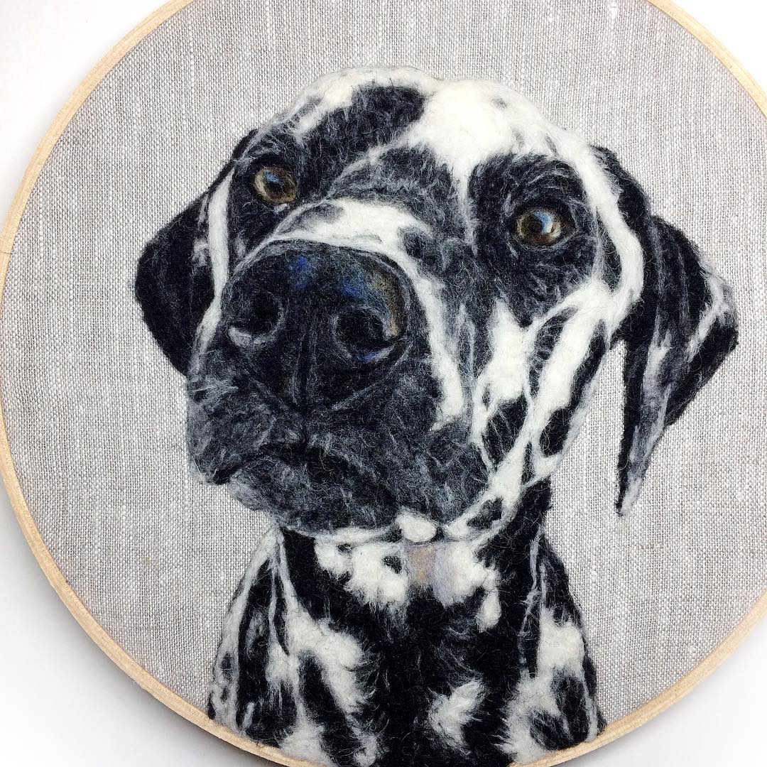 Incredibly Lifelike Felt Paintings of Pets and Plants by Dani Ives