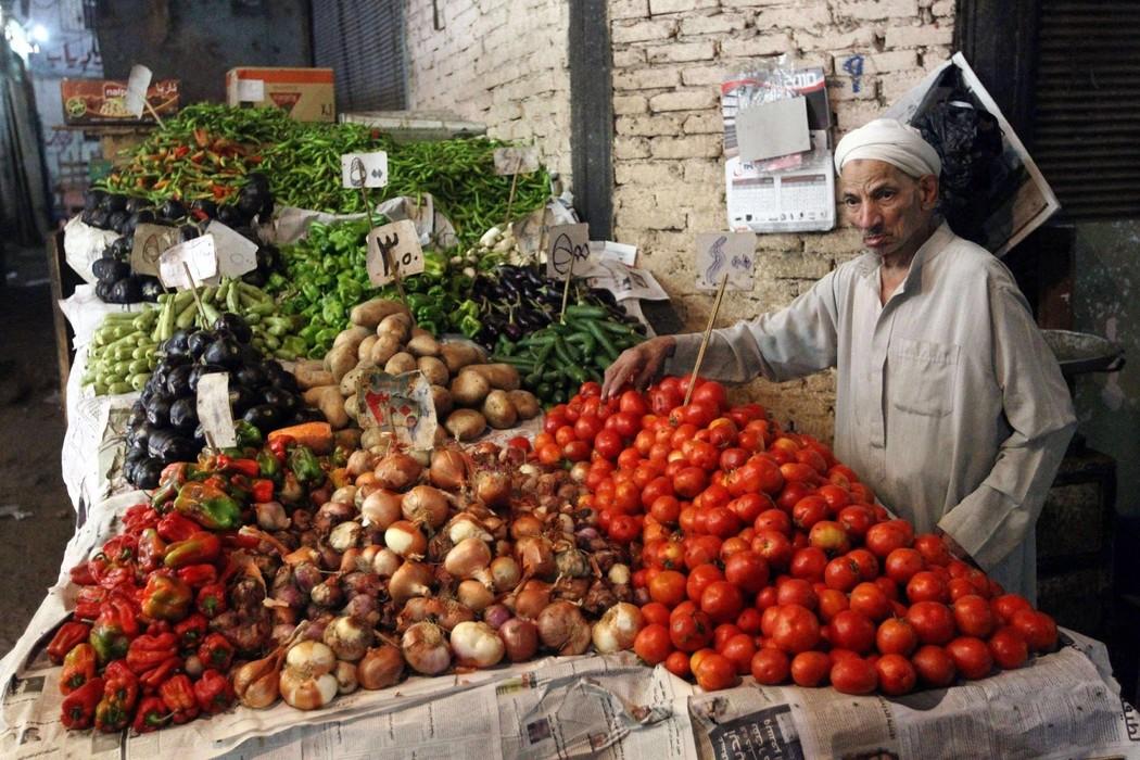 9. Всего в районе Дахаба расположено более 30 дайв-сайтов, главная прелесть которых — возможность по