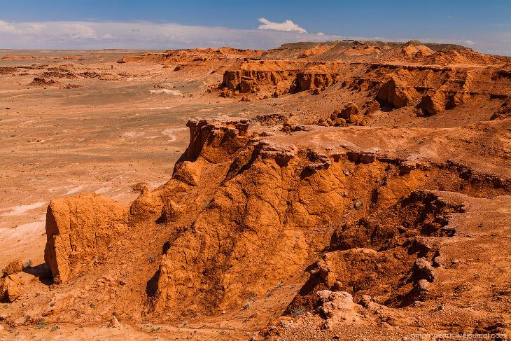 2. Загадку массового захоронения огромного количества ящеров в одном месте ученые пытались разрешить