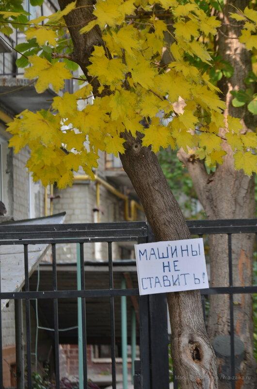 Осень 2014, Саратов, 14 октября 2014 года